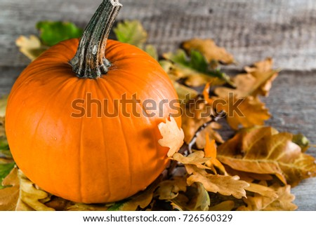 Whole pumpkin on wooden table, organic vegetable harvest, thanksgiving background, autumn compositions with leaves in orange color