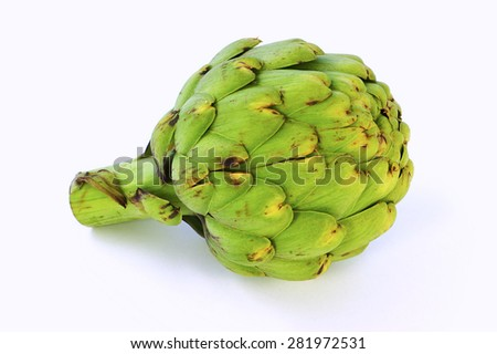 Whole raw artichoke on white background in horizontal format - stock photo
