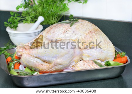 Whole raw turkey, dressed with butter, spices and surrounded with vegetables ready to go into the oven. - stock photo