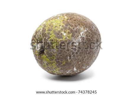 Whole single breadfruit on white background