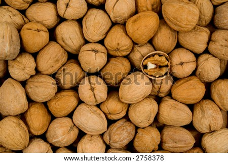 Whole Walnuts and One Half Walnut - stock photo