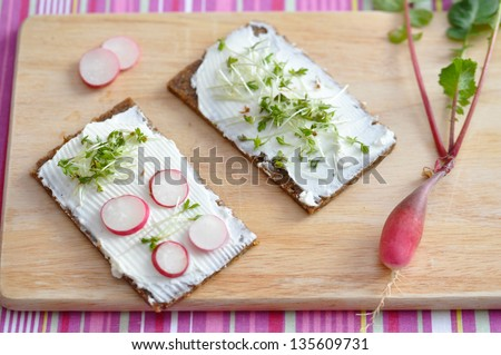 Wholesome sandwich with cheese and garden radish - stock photo