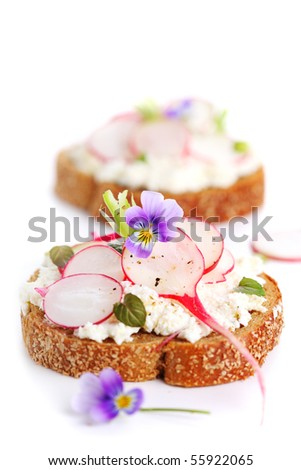 Wholesome sandwich with cheese, garden radish on white isolated background - stock photo