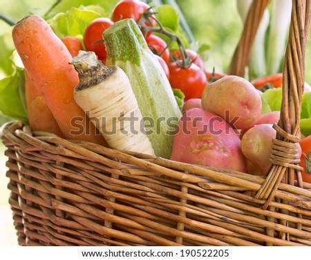 Wicker basket is full with fresh organic vegetables