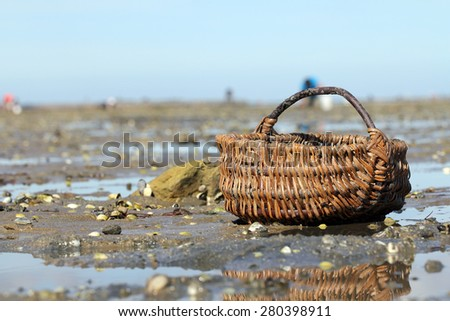 "Wicker basket on ""Le Gois"" - stock photo"