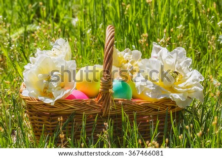 Wicker basket with painted easter eggs and white double tulips  in the green grass on a sunny spring day