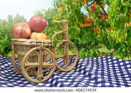 Wicker Bicycle Basket With Apples On Table With Blue White Checkered Tablecloth And Garden In The Blurred Background - stock photo