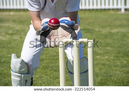 Wicket Keeper Catches Cricket Ball Stock Photo Royalty Free