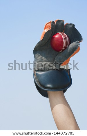 Wicket keeper catching a ball - stock photo