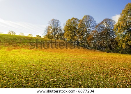 Wide Angle capture with stunning light and Color on abandoned public playing field covered with leaves on a bright cold day during November in Northumberland, England. - stock photo