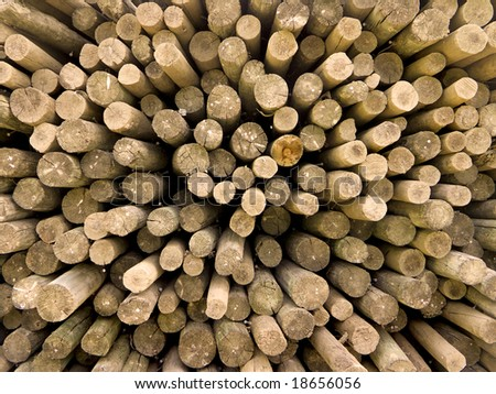Wide-angle shot of a pile of wooden poles end-on.