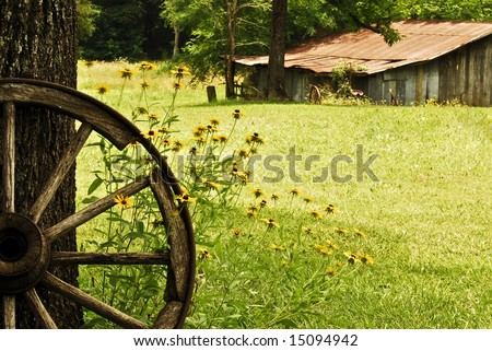 Wide angle shot of a wagon wheel in front of Black-eyed Susans with a vintage barn in the background. - stock photo