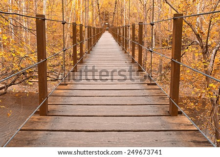 Wide-angle suspension bridge from the Orange Grove area of Patapsco Valley State Park near Baltimore, Maryland (USA). Processed with bright yellow colors int he foliage for a more surreal atmosphere. - stock photo