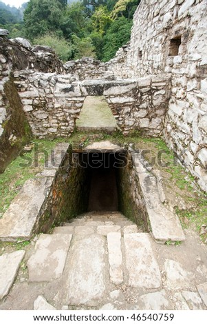 Wide angle view of entrance to tunnel and stone work in 'The Palace' with steamy jungle in background at the ancient Mayan city of Palenque. Chiapas, Mexico. - stock photo