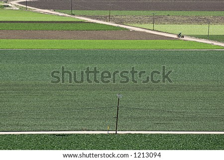 Wide angle view of fields of multi-colored vegetables and a lone tractor on a dirt road. - stock photo