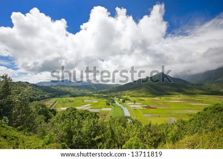 Wide angle view of Hanalei Valley in Kauai, Hawaii