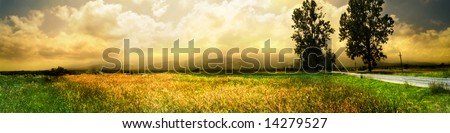 wide landscape with road in a summer day - stock photo