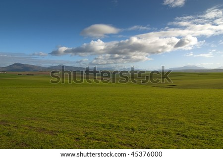 Wide open grass plain with blue skies and clouds overhead
