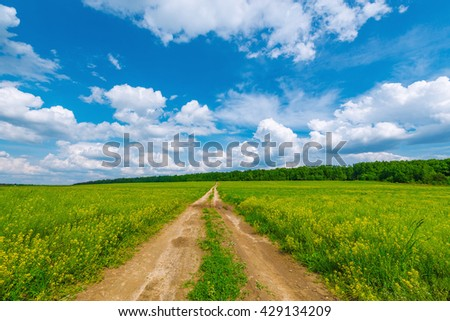 Wide road by the field with flowers at hot day summer time. - stock photo