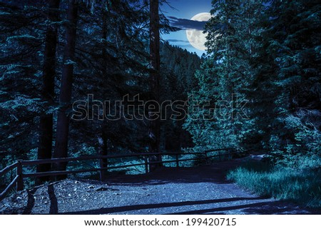 wide trail with a wooden fence near the lawn in the shade of pine trees of green forest at night in moon light - stock photo