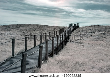 Wide view of an wooden walkway in a seaside dune; infrared - stock photo