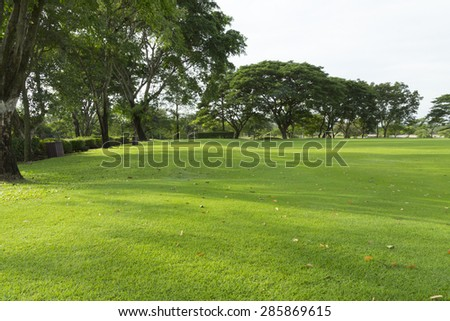 widely golf  course in very nice day in summer  - stock photo