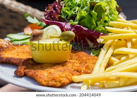 Wiener schnitzel with  French fries and vegetables - stock photo