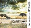 wild Africa - stock photo