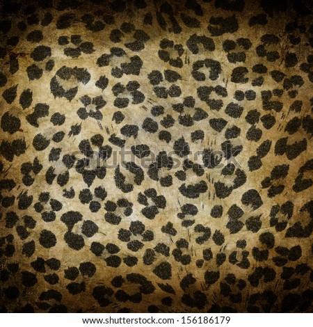 Wild animal skin pattern - leopard or cheetah - stock photo