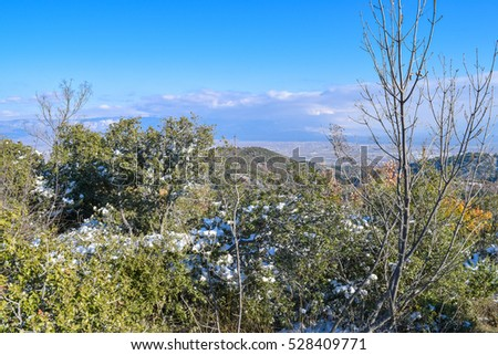Wild Balkans nature. Eastern Macedonia. Mountains near Strumica town