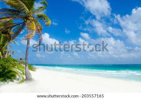 Wild Beach at Tulum  -  Yucatan Mexico - stock photo