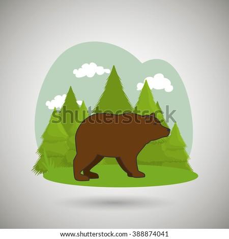 wild bear design  - stock photo