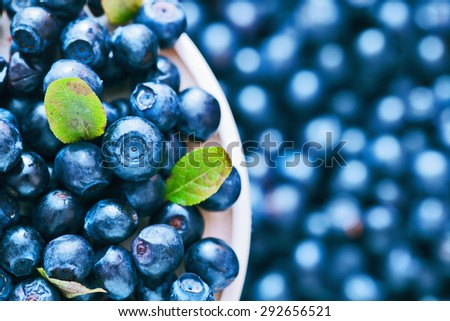 Wild berry. Blueberries in a saucer closeup - stock photo