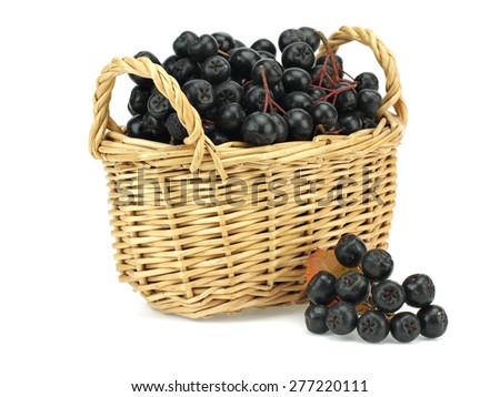 Wild black chokeberry (aronia) in basket on a white background   - stock photo