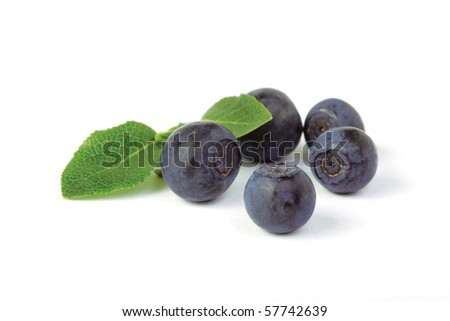 wild blueberries (bilberry) (Vaccinium myrtillus) with green leaves  on white background. Macro, shallow focus. - stock photo