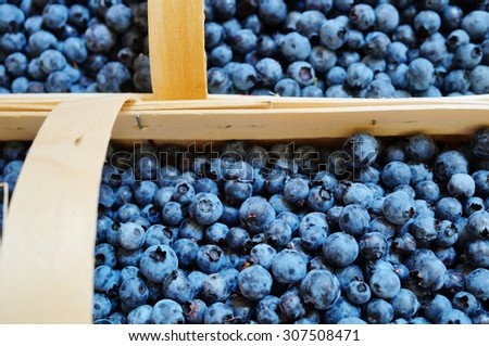 Wild blueberries (bleuets) at a Canadian farmers market
