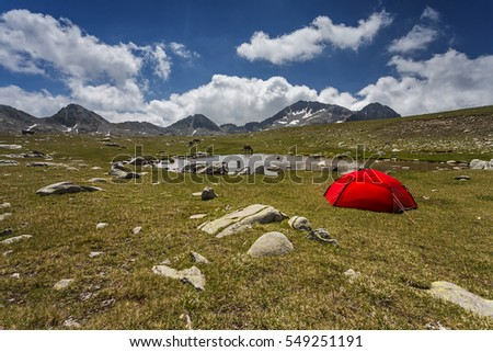 Wild camping neara a lake, a red tent and some wild horses in Pirin Mountain, Bulgaria