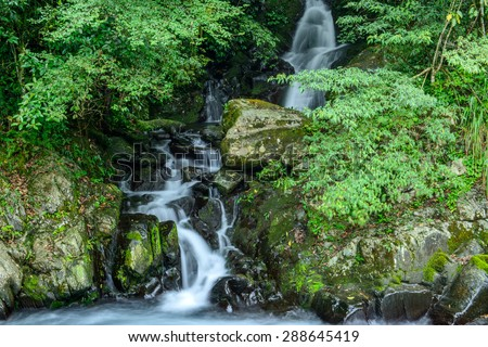 Wild cascade between stones in  forest landscape - stock photo