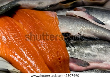Wild caught salmon at Seattle's Pike place market - stock photo