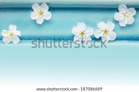 Wild cherry flowers in blue bowl with water , spa background  - stock photo