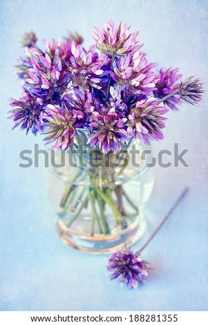 wild clover violet flowers in a vase on a table.  - stock photo