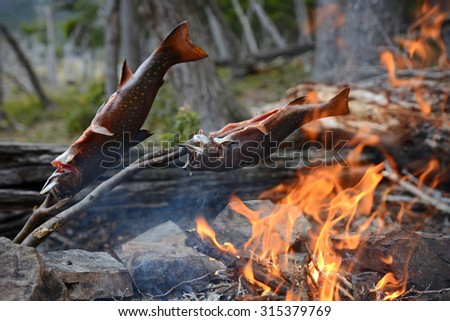 Wild colorful trouts baked on open fire, Patagonia, Chile - stock photo