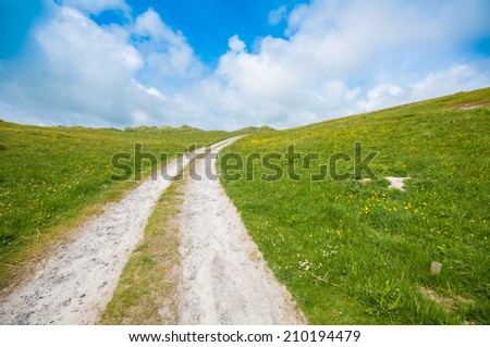 Wild countryside single track road in a grass field with blue sky and yellow flowers. Outer Hebrides, Scotland, UK.