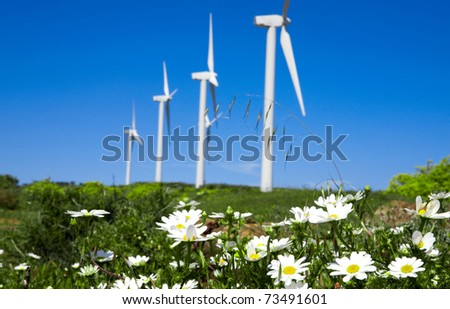 wild daisy  against  blue sky with giant Wind turbine as background - stock photo