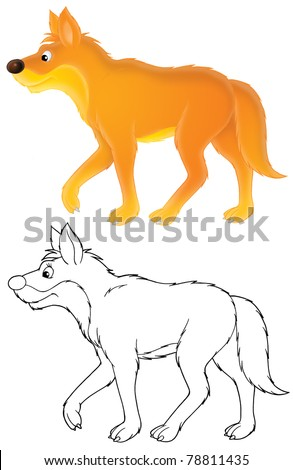 wild dog dingo, isolated color drawing and black-and-white outline for a coloring page, on a white background - stock photo