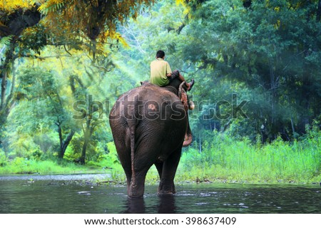 Wild elephant and mahout in the beautiful forest at Kanchanaburi province in Thailand, (with clipping path) - stock photo