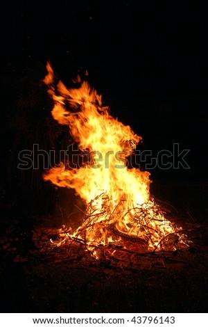 wild fire - stock photo