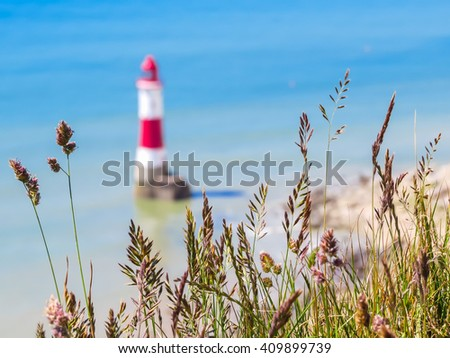 Wild flowers and Beachy Head Lighthouse as blured background. Eastbourne, East Sussex, England. Selective focus - stock photo