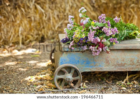 Wild flowers on  a vintage cart - stock photo