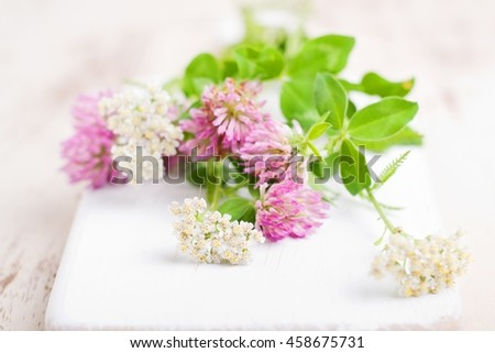wild flowers on white table